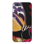Flores de mariposa de monarca iPhone 5 protector