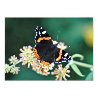 Flores de mariposa del almirante rojo anuncio personalizado