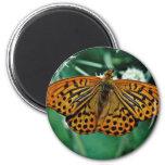 Flores de mariposa imán