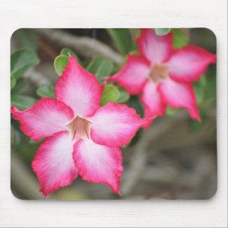Flores de Mousepad Tapetes De Ratones