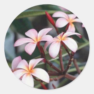 Flores de Nautral Etiqueta Redonda