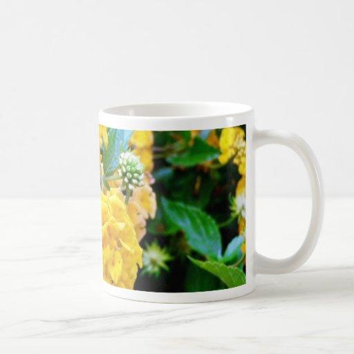 Flores de oro taza de café