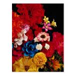 Flores de papel de las flores de México Tarjeta Postal