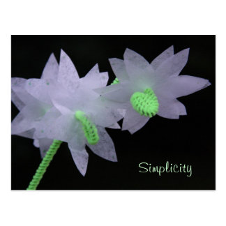 Flores de papel seda tarjetas postales