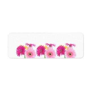 Flores de Piink de la margarita del Gerbera Etiquetas De Remite