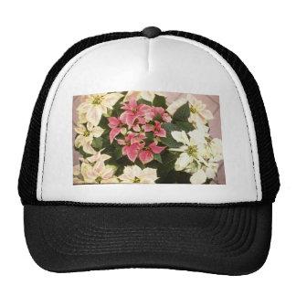 Flores de Pulcherrima del euforbio (Poinsettia) Gorras De Camionero