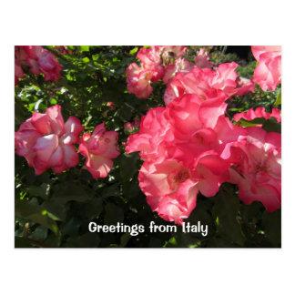 Flores de Roma Italia