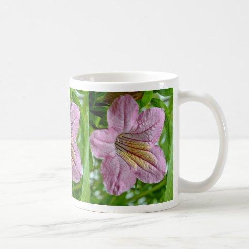 Flores de Ruellia Macrantha Taza De Café