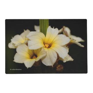 Flores de satén salvamanteles
