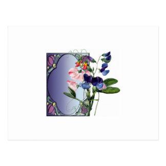 Flores de Sweetpea Tarjetas Postales