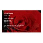 Flores de terciopelo rojas blancas plantillas de tarjeta de negocio