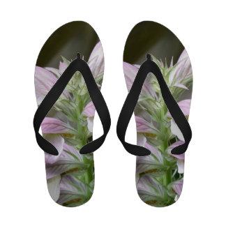 Flores de Turtlehead Chanclas De Playa