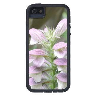 Flores de Turtlehead iPhone 5 Funda