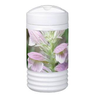 Flores de Turtlehead Enfriador De Bebida Igloo