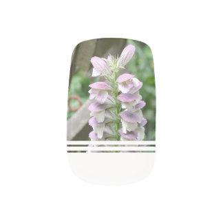 Flores de Turtlehead Pegatina Para Manicura