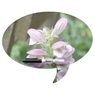 Flores de Turtlehead Pizarra