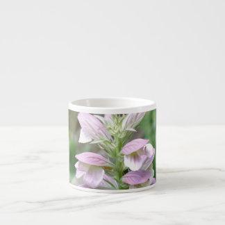 Flores de Turtlehead Tazita Espresso