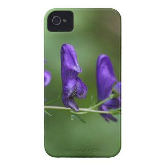 Flores de un Akonite (variegatum del Aconitum) Carcasa Para iPhone 4 De Case-Mate