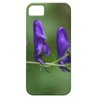 Flores de un Akonite (variegatum del Aconitum) Funda Para iPhone SE/5/5s