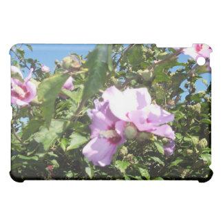 Flores de un jardín