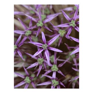 Flores de una cebolla persa plantilla de membrete