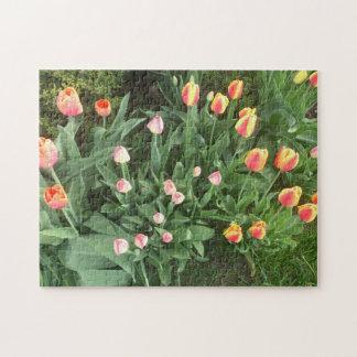 Flores de Waterloo Puzzle