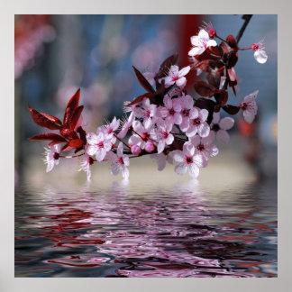 Flores decorativos del cerezo impresiones
