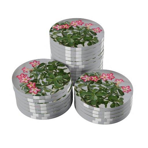 Flores del Adenium del rosa de desierto en la flor Fichas De Póquer