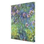 Flores del Agapanthus de Claude Monet Lienzo Envuelto Para Galerias