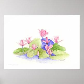Flores del agua póster