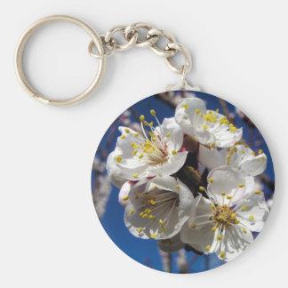 Flores del albaricoque llavero redondo tipo pin