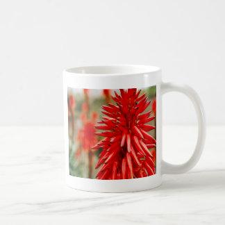 Flores del áloe tazas