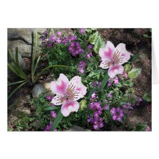 Flores del Alstroemeria Tarjeta De Felicitación