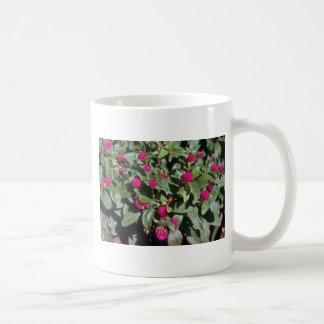 Flores del amaranto de globo (Gomphrena Globosa) Tazas