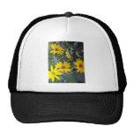 Flores del amarillo gorras de camionero