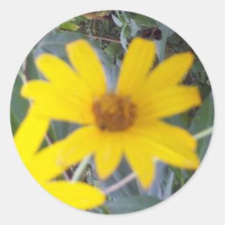 Flores del amarillo pegatina redonda