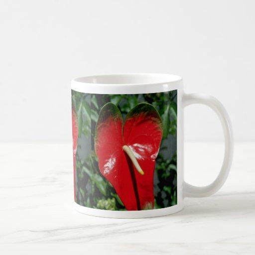 Flores del Anthurium Tazas