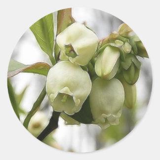 Flores del arándano etiquetas redondas