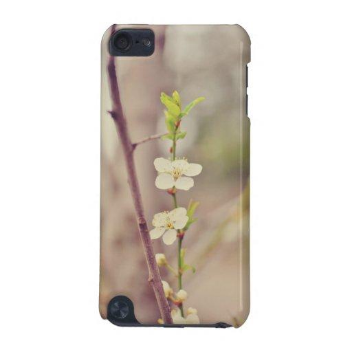 Flores del árbol de la primavera