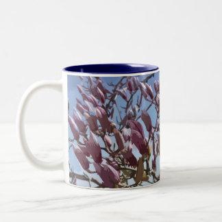 Flores del árbol de tulipán/de la magnolia de taza de dos tonos