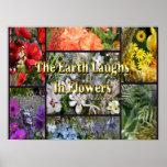 Flores del arco iris - la tierra ríe por Emerson