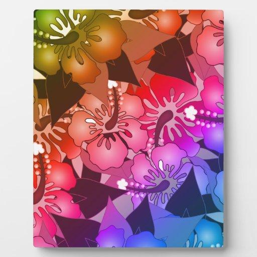 Flores del arco iris placas para mostrar