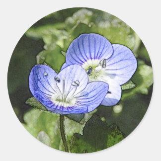 Flores del arrastramiento Speedwell (filiformis Pegatina Redonda