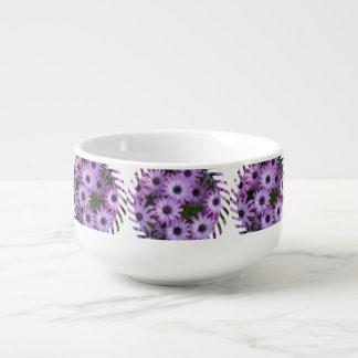 Flores del aster bol para sopa