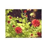 Flores del botón rojo impresión en lona
