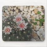 Flores del cactus alfombrilla de ratón