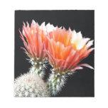 Flores del cactus blocs