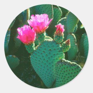 Flores del cactus de Beavertail Pegatina Redonda