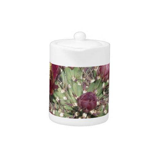 Flores del cactus de Borgoña