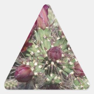 Flores del cactus de Borgoña Pegatina